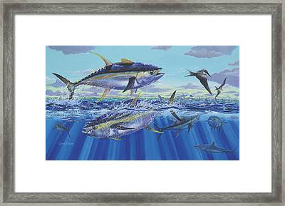 Yellowfin Bust Framed Print by Carey Chen