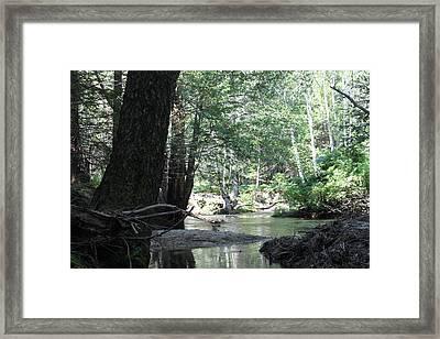 Yosemite Creek Framed Print by Remegio Onia