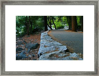 Yosemite Walk Way Framed Print by Henrik Lehnerer