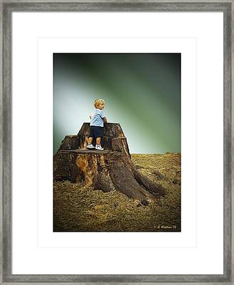 Young Boy Framed Print by Brian Wallace