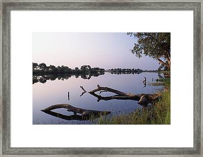 Zambesi River Framed Print by Axiom Photographic