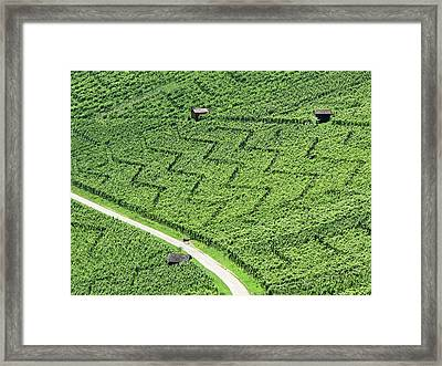 Zig-zag In Vineyards Framed Print by Ursula Sander