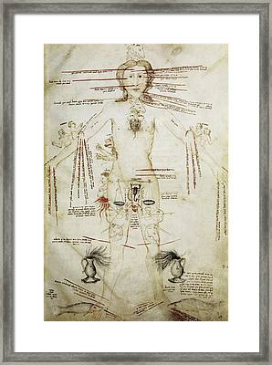 Zodiacal Man, 15th Century Framed Print by
