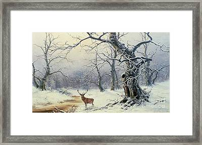 A Stag In A Wooded Landscape  Framed Print by Nils Hans Christiansen
