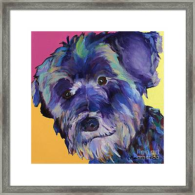 Beau Framed Print by Pat Saunders-White