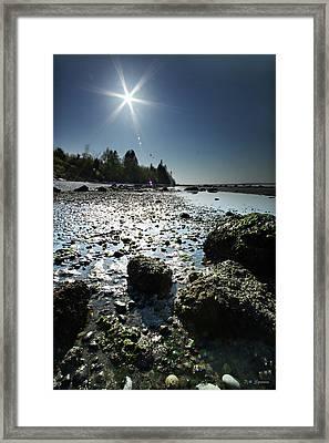 Birch Bay Beach Wa Framed Print by DMSprouse Art