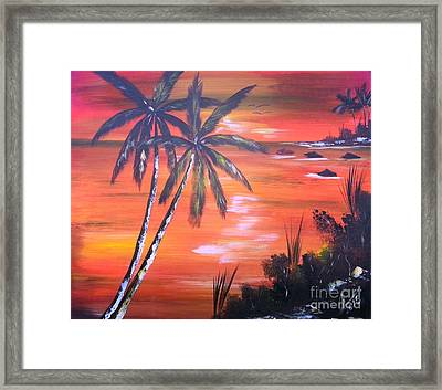 Coconut Palms  Sunset Framed Print by Collin A Clarke