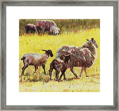 Following Framed Print by Helen White