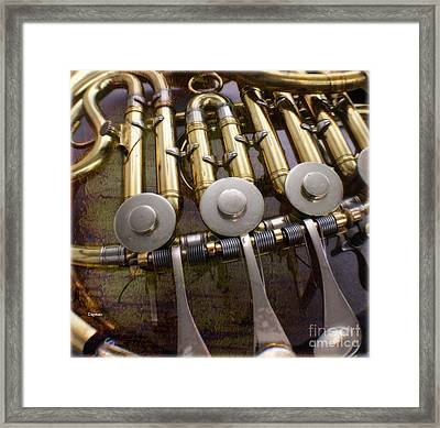 French Embouchure Framed Print by Steven  Digman