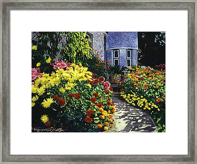 Garden Shadows Framed Print by David Lloyd Glover