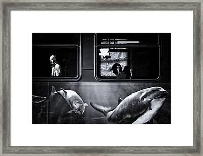 :: Framed Print by Jianwei Yang
