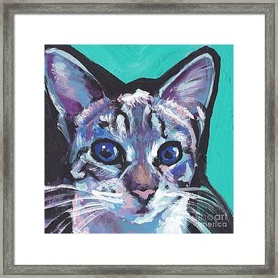 Pritty Kitty  Framed Print by Lea S