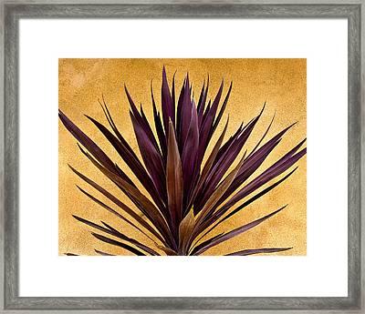 Purple Giant Dracaena Santa Fe Framed Print by John Hansen