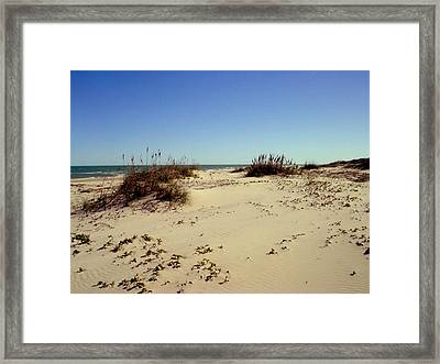 South Padre Island Dunes Framed Print by Evelyn Patrick