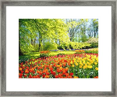 Spring Garden Framed Print by Veikko Suikkanen