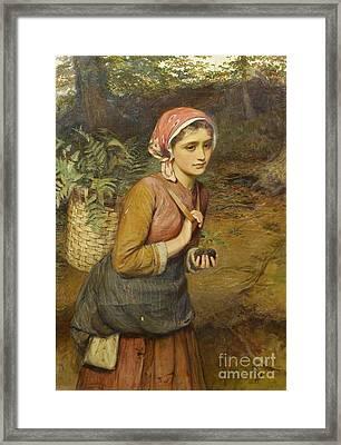 The Fern Gatherer  Framed Print by Charles Sillem