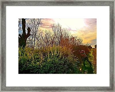 When Honey Finds Her Beez Framed Print by Levi Wilkinson