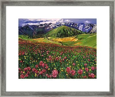 Wildflowers Framed Print by David Lloyd Glover