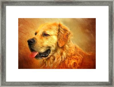 Wombies Framed Print by Trudi Simmonds