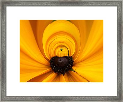 Yellow 2 Framed Print by Jouko Lehto