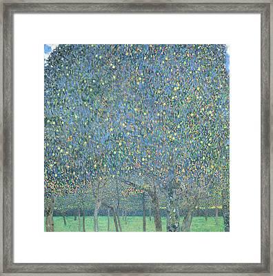 Pear Tree Framed Print by Gustav Klimt