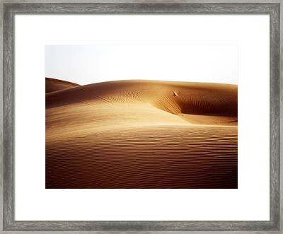 08021 Framed Print by Jeffrey Freund