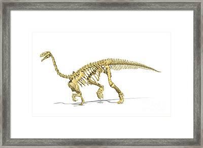 3d Rendering Of A Plateosaurus Dinosaur Framed Print by Leonello Calvetti