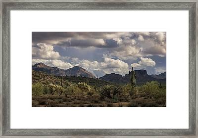A Beautiful Desert Day  Framed Print by Saija Lehtonen