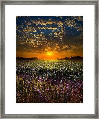 A New Day Framed Print by Phil Koch