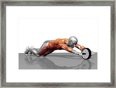 Ab Wheel Exercise Framed Print by MedicalRF.com