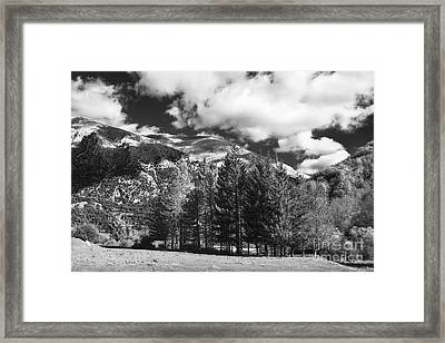 Abruzzo National Park, Italy Framed Print by Luigi Morbidelli