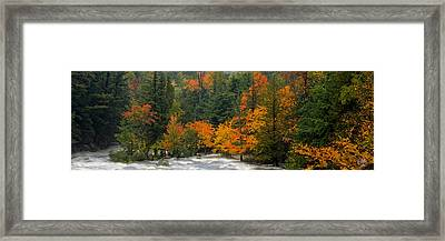 Adirondack Colors Framed Print by Brad Hoyt
