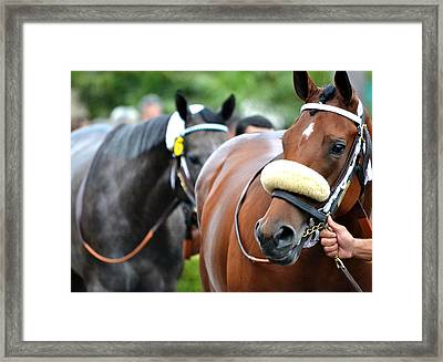 After The Race Framed Print by Fraida Gutovich