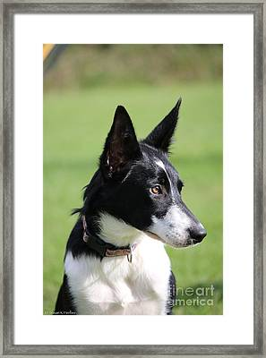 All Ears And Nose Framed Print by Susan Herber
