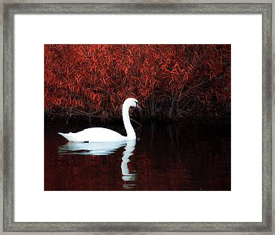 Along The Shores Of Avalon Framed Print by Ron  McGinnis