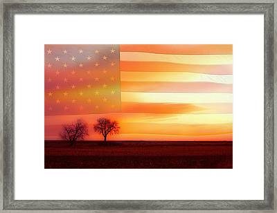 America The Beautiful Framed Print by James BO  Insogna