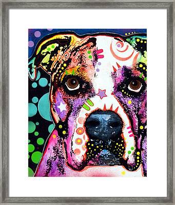 American Bulldog Framed Print by Dean Russo