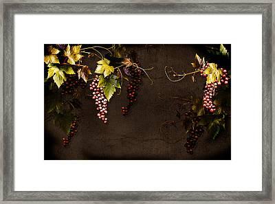 Antique Grapes Framed Print by Marsha Tudor