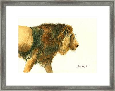 Asiatic Lion Framed Print by Juan Bosco