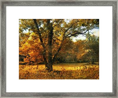 Autumn Arises Framed Print by Jessica Jenney