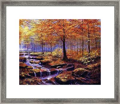 Autumn In Goldstream Park Framed Print by David Lloyd Glover