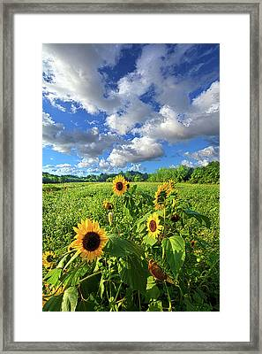 Autumn Is Near Framed Print by Phil Koch