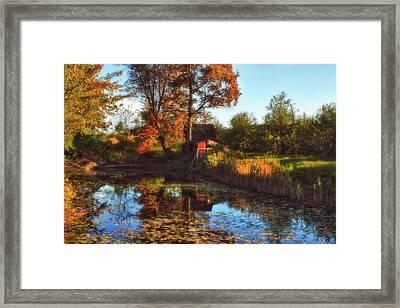 Autumn Palette Framed Print by Joann Vitali