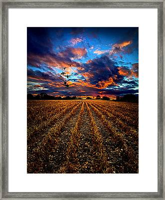 Autumn Rising Framed Print by Phil Koch