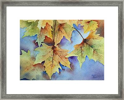 Autumn Splendor Framed Print by Bobbi Price