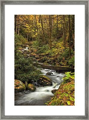 Autumn Stream Framed Print by Andrew Soundarajan