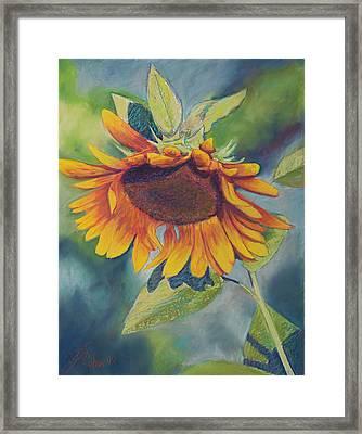 Big Sunflower Framed Print by Billie Colson