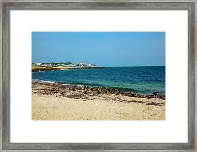 Birds On The Beach Framed Print by Madeline Ellis