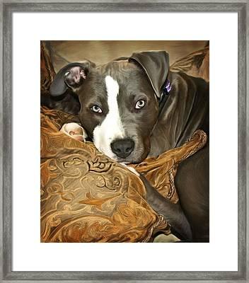 Blu Framed Print by Deanna Maxwell