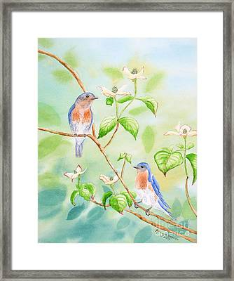 Bluebirds In Dogwood Tree Framed Print by Kathryn Duncan